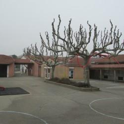Ecoles - Photo 3