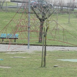 Parc MJC - Photo 2