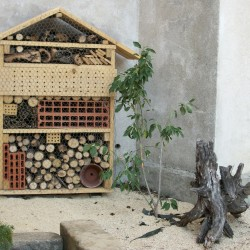 Hôtel à Insectes - Photo 3